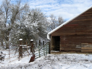 snow falling off the barn roof