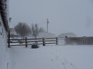 It's not always a winter wonderland