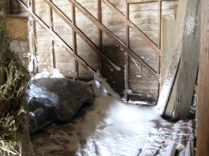 More drifted snow in the barn